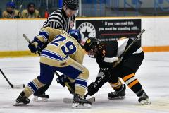 CIAC Ice Hockey; Newtown 2 vs. Daniel Hand 6 - Photo # 1335
