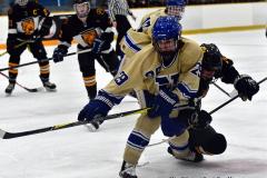CIAC Ice Hockey; Newtown 2 vs. Daniel Hand 6 - Photo # 1390