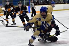 CIAC Ice Hockey; Newtown 2 vs. Daniel Hand 6 - Photo # 1391