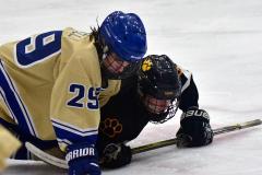 CIAC Ice Hockey; Newtown 2 vs. Daniel Hand 6 - Photo # 1393