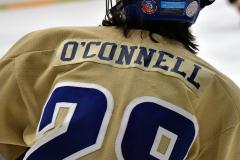 CIAC Ice Hockey; Newtown 2 vs. Daniel Hand 6 - Photo # 1416