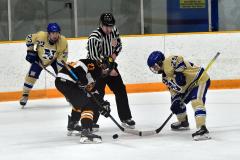 CIAC Ice Hockey; Newtown 2 vs. Daniel Hand 6 - Photo # 1473