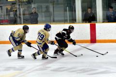CIAC Ice Hockey; Newtown 2 vs. Daniel Hand 6 - Photo # 1521