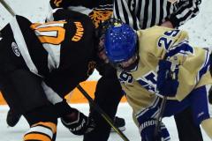 CIAC Ice Hockey; Newtown 2 vs. Daniel Hand 6 - Photo # 1523