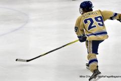 CIAC Ice Hockey; Newtown 2 vs. Daniel Hand 6 - Photo # 1542