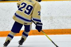 CIAC Ice Hockey; Newtown 2 vs. Daniel Hand 6 - Photo # 1565