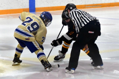 CIAC Ice Hockey; Newtown 2 vs. Daniel Hand 6 - Photo # 1700