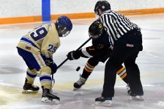 CIAC Ice Hockey; Newtown 2 vs. Daniel Hand 6 - Photo # 1701