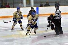 CIAC Ice Hockey; Newtown 2 vs. Daniel Hand 6 - Photo # 1704