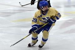 CIAC Ice Hockey; Newtown 2 vs. Daniel Hand 6 - Photo # 1708