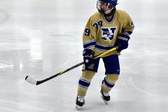 CIAC Ice Hockey; Newtown 2 vs. Daniel Hand 6 - Photo # 1714