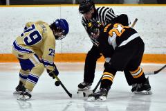 CIAC Ice Hockey; Newtown 2 vs. Daniel Hand 6 - Photo # 1744
