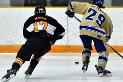 CIAC Ice Hockey; Newtown 2 vs. Daniel Hand 6 - Photo # 1770