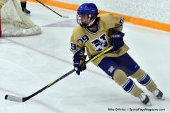 CIAC Ice Hockey; Newtown 2 vs. Daniel Hand 6 - Photo # 1781