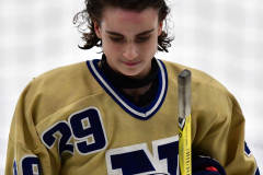 CIAC Ice Hockey; Newtown 2 vs. Daniel Hand 6 - Photo # 2042