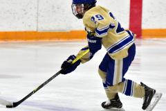 CIAC Ice Hockey; Newtown 2 vs. Daniel Hand 6 - Photo # 231