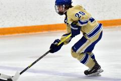 CIAC Ice Hockey; Newtown 2 vs. Daniel Hand 6 - Photo # 232
