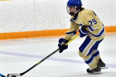 CIAC Ice Hockey; Newtown 2 vs. Daniel Hand 6 - Photo # 234