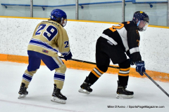 CIAC Ice Hockey; Newtown 2 vs. Daniel Hand 6 - Photo # 573
