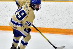 CIAC Ice Hockey; Newtown 2 vs. Daniel Hand 6 - Photo # 574