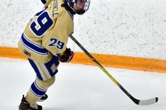 CIAC Ice Hockey; Newtown 2 vs. Daniel Hand 6 - Photo # 575