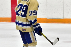 CIAC Ice Hockey; Newtown 2 vs. Daniel Hand 6 - Photo # 643