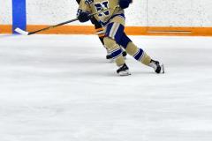 CIAC Ice Hockey; Newtown 2 vs. Daniel Hand 6 - Photo # 648