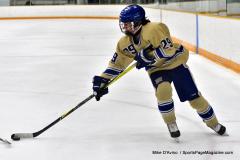 CIAC Ice Hockey; Newtown 2 vs. Daniel Hand 6 - Photo # 761