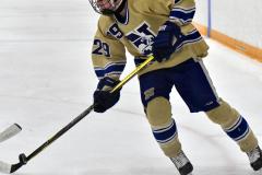 CIAC Ice Hockey; Newtown 2 vs. Daniel Hand 6 - Photo # 762
