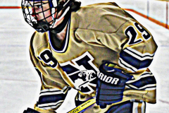 CIAC Ice Hockey; Newtown 2 vs. Daniel Hand 6 - Photo # 764