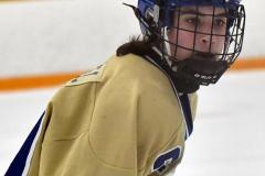 CIAC Ice Hockey; Newtown 2 vs. Daniel Hand 6 - Photo # 820