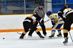 CIAC Ice Hockey; Newtown 2 vs. Daniel Hand 6 - Photo # 842
