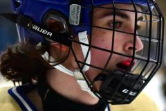 CIAC Ice Hockey; Newtown 2 vs. Daniel Hand 6 - Photo # 868