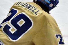 CIAC Ice Hockey; Newtown 2 vs. Daniel Hand 6 - Photo # 975
