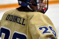 CIAC Ice Hockey; Newtown 2 vs. Daniel Hand 6 - Photo # 988