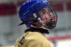 CIAC Ice Hockey; Newtown 2 vs. Daniel Hand 6 - Photo # 989