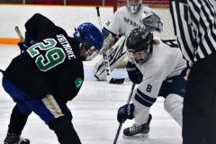 CIAC Ice Hockey; Newtown 4 vs. SH,LI,TH,NO 1 - Photo # (1020)