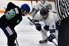 CIAC Ice Hockey; Newtown 4 vs. SH,LI,TH,NO 1 - Photo # (1021)