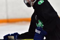CIAC Ice Hockey; Newtown 4 vs. SH,LI,TH,NO 1 - Photo # (1023)