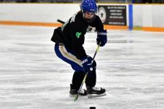 CIAC Ice Hockey; Newtown 4 vs. SH,LI,TH,NO 1 - Photo # (104)