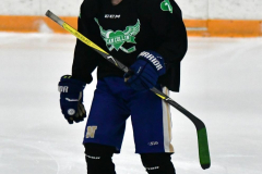 CIAC Ice Hockey; Newtown 4 vs. SH,LI,TH,NO 1 - Photo # (11)