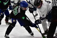 CIAC Ice Hockey; Newtown 4 vs. SH,LI,TH,NO 1 - Photo # (1120)