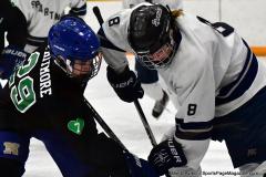 CIAC Ice Hockey; Newtown 4 vs. SH,LI,TH,NO 1 - Photo # (1121)
