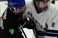 CIAC Ice Hockey; Newtown 4 vs. SH,LI,TH,NO 1 - Photo # (1123)