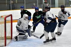 CIAC Ice Hockey; Newtown 4 vs. SH,LI,TH,NO 1 - Photo # (1168)
