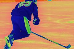 CIAC Ice Hockey; Newtown 4 vs. SH,LI,TH,NO 1 - Photo # (1171)