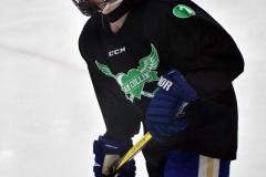 CIAC Ice Hockey; Newtown 4 vs. SH,LI,TH,NO 1 - Photo # (1173)