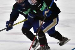 CIAC Ice Hockey; Newtown 4 vs. SH,LI,TH,NO 1 - Photo # (1233)