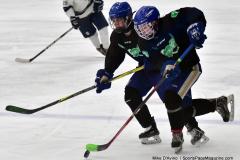 CIAC Ice Hockey; Newtown 4 vs. SH,LI,TH,NO 1 - Photo # (1234)