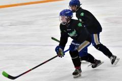 CIAC Ice Hockey; Newtown 4 vs. SH,LI,TH,NO 1 - Photo # (1235)